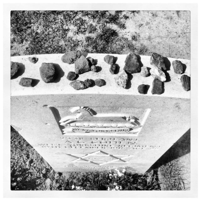 Joods-graf-Ieper-mer-steentjes